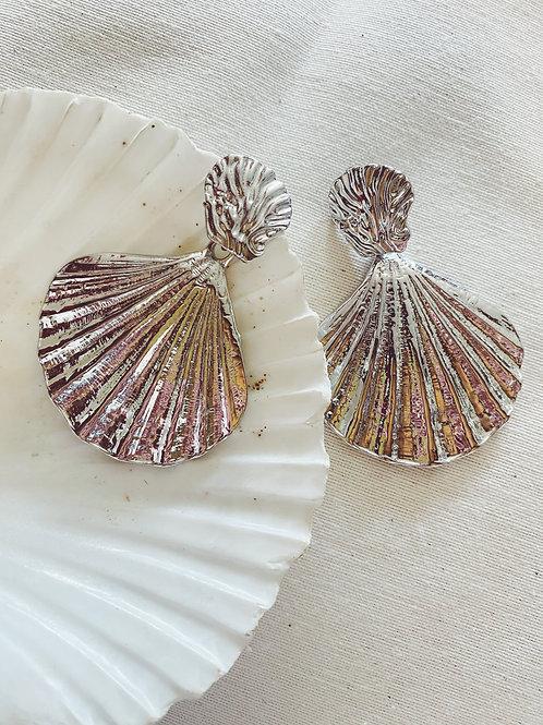 Conchas plata
