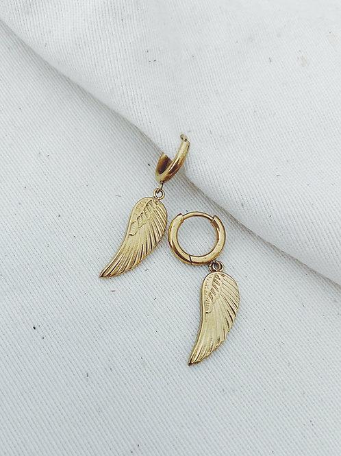 Wings oro