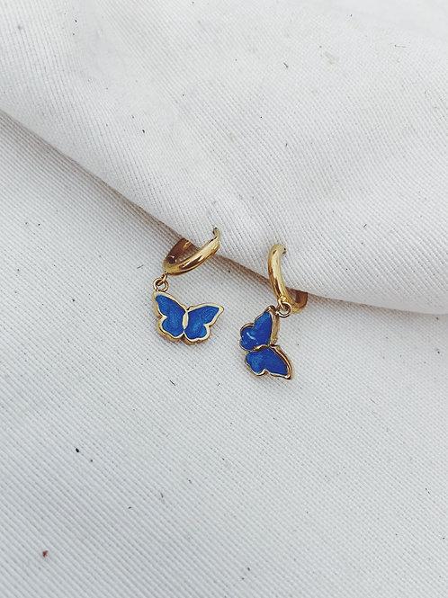 Mariposas azul oscuro