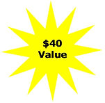 carpet cleaning denver $40 value