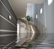 carpet cleaning denver water damage and flood restoration