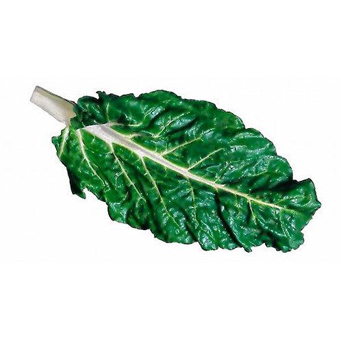 Acelga verde (500 gr)