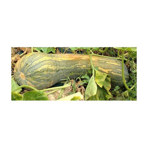Calabaza vasca (1 kg)