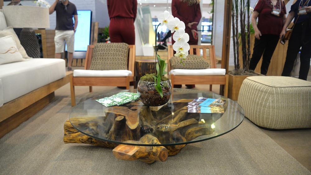 Mesa de centro raiz em madeira maciça de Teca com tampo de vidro