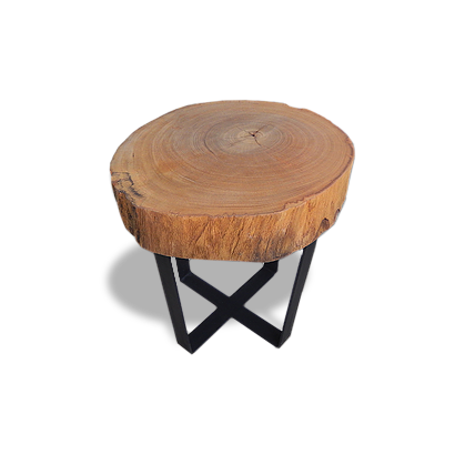 Tree Trunk Side Table  - MLT02