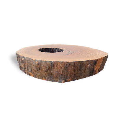Tree Trunk Coffee Table - MCT08