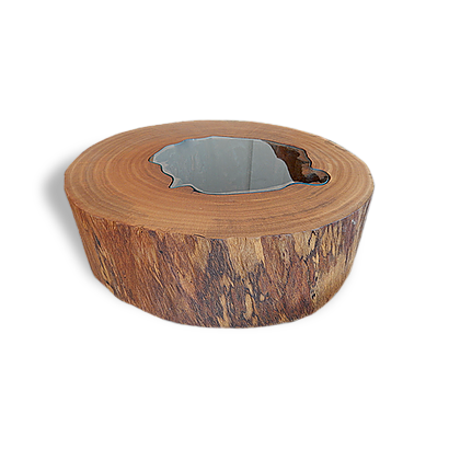 Tree Trunk Shaped Coffee Table - MCT05