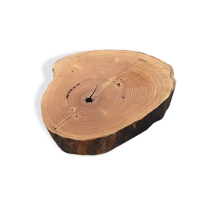 Tree Trunk – Shaped Coffee Table - MCT03