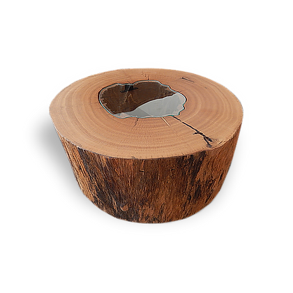 Tree Trunk Shaped Coffee Table - MCT01