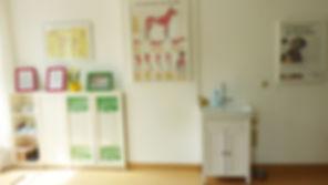Behandlungsraum 1 Phystio Therapie Hunde und Katzen