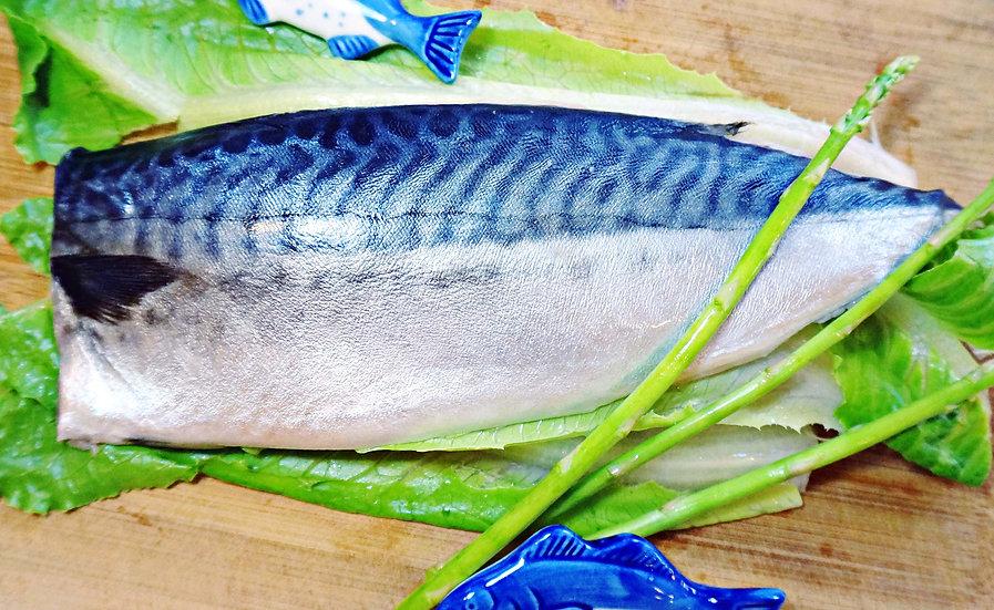北大西洋薄鹽鯖魚