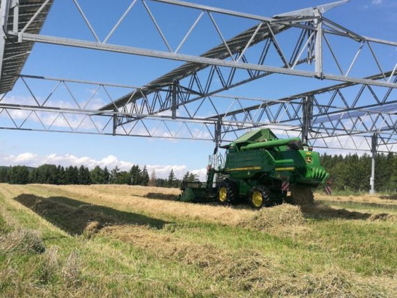 Combining Solar Panels With Agriculture Makes Land More Productive