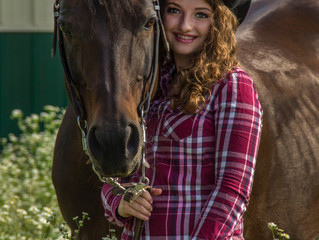 AQHA: Model Quarter Horses