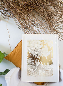 Tiny Giraffe Gold Foil Sydney Print