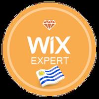 wix ambassador bandera.png