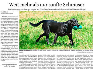 2019 07 02 - Passauer Neue Presse - Go S