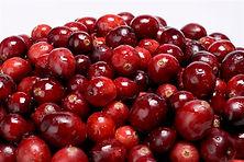 Cranberries Heap.jpg