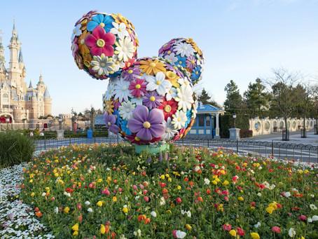 Be a Good Theme Park Guest
