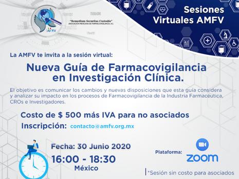 Sesión Virtual 30 de Junio