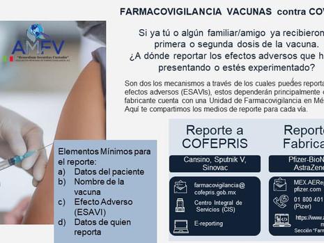 AMFV Webinars.