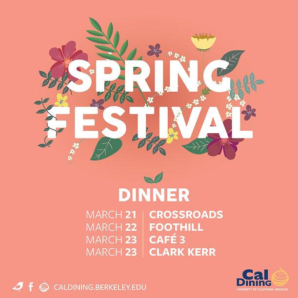 CD_170301_Spring-Festival_Fb-SQUARE.jpg