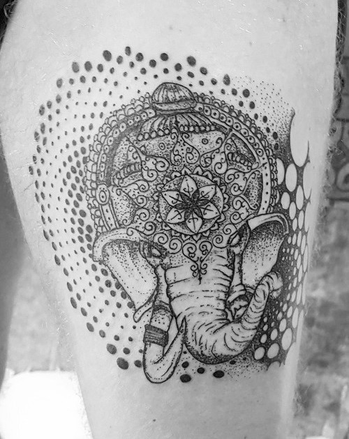 elephant-thigh_edited.jpg