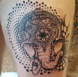 elephant-thigh.jpg