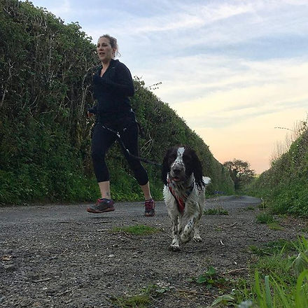 #canicross #dogfit #runningwithdogs