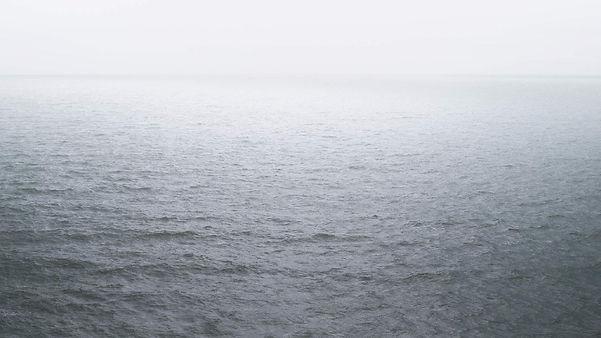 zee-2.jpg