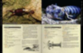 arthropods.jpg