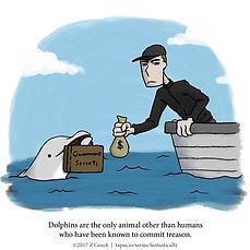 04-dolphins.jpg