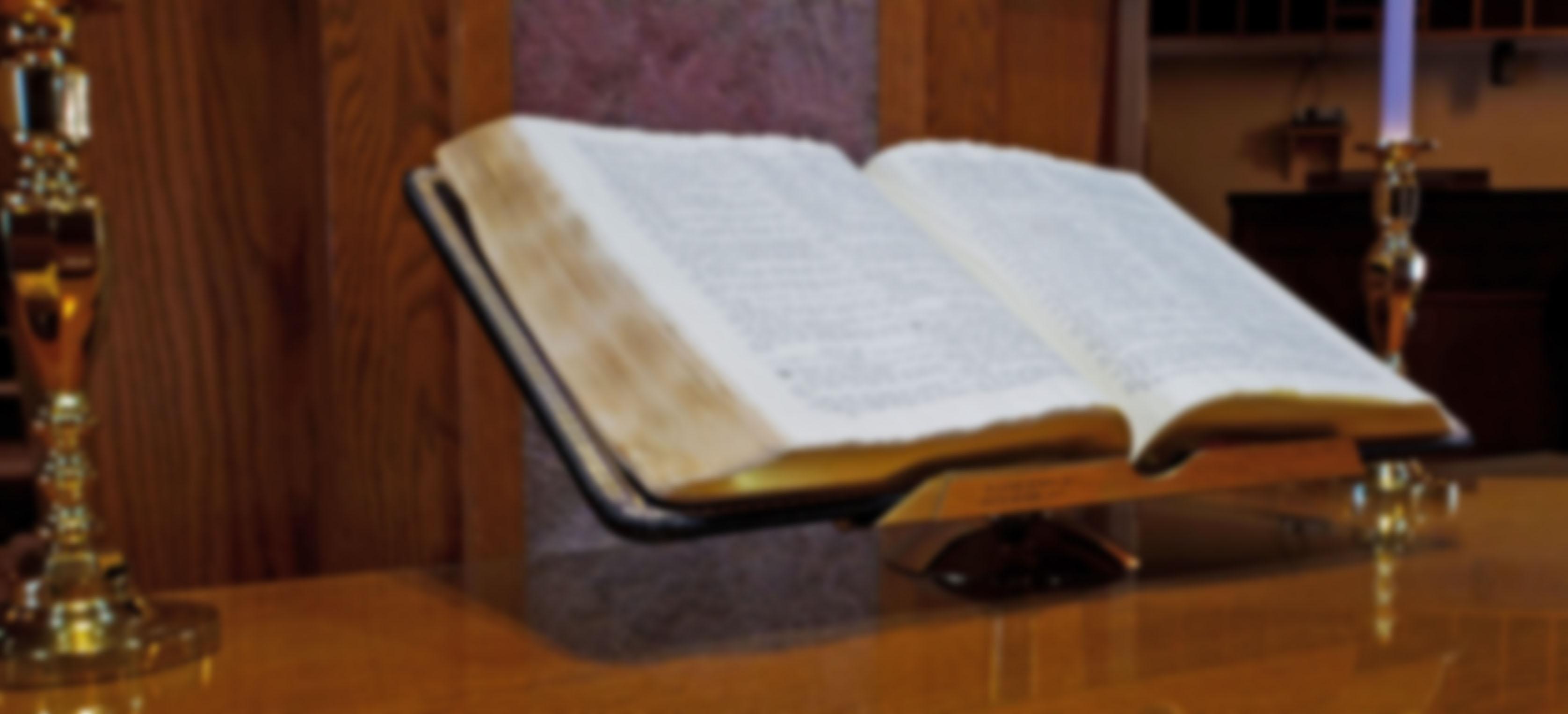 Open Bible 2 Blur