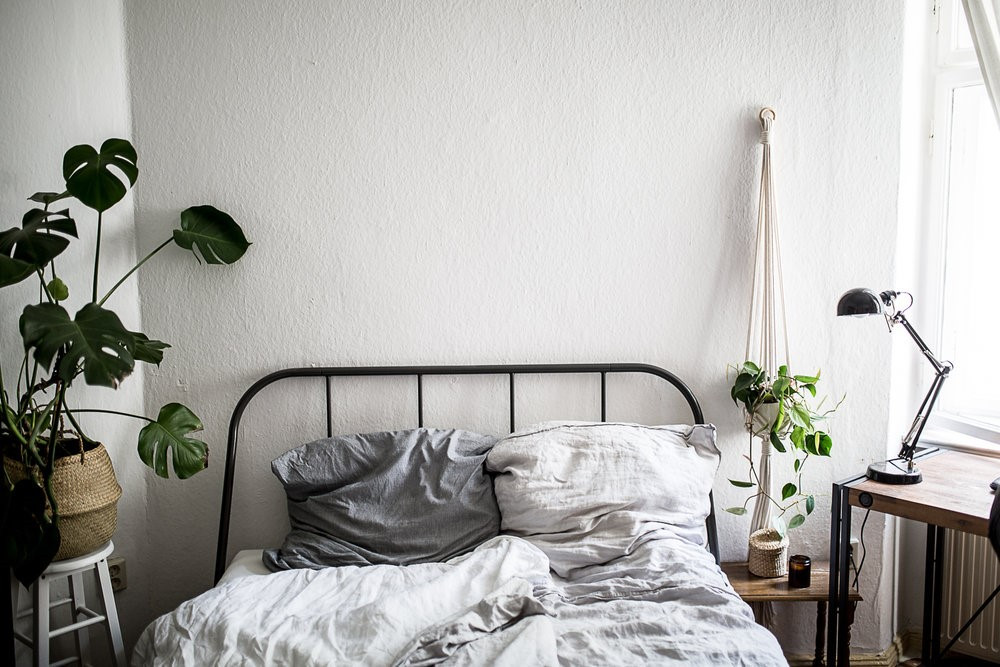 Use plants to purify the air in your bedroom, and sleep better