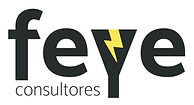 45_FEYE_Consultores.png
