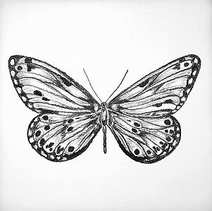 BLACK%20%26%20WHITE%20BUTTERFLY%20ON%20C