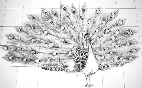 Peacock%20BIRD%20OF%20PARADISE%20BESPOKE