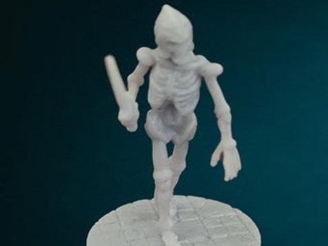 Skeleton Solider