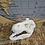 Thumbnail: T Rex Skull