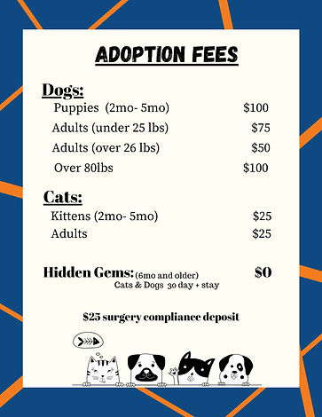 Adoption fees for September.jpg