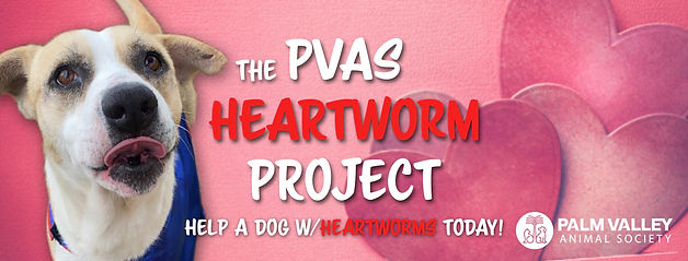 Heartwormproject.jpg