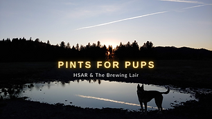 Pints for Pups (2).png