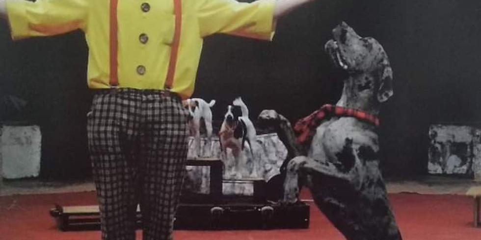 Мастер-класс цирковой дрессировки