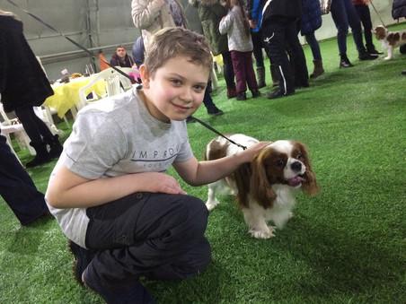 Кавалер встреча - дружба детей и собак
