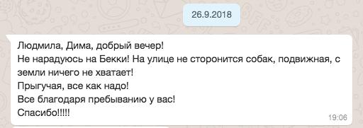 Отзыв хозяина Бэкки