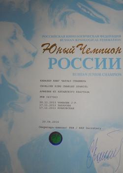 Сертификат Юный Чемпион России