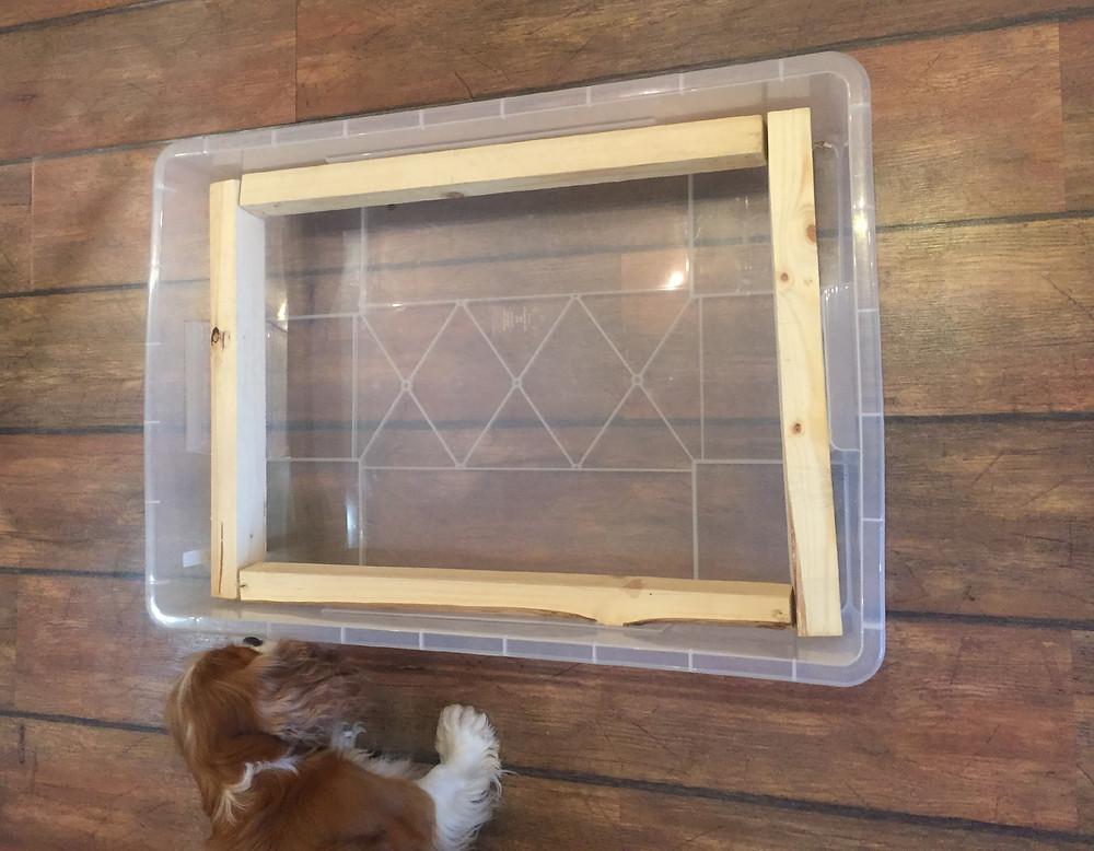 Ящик для кормления щенков