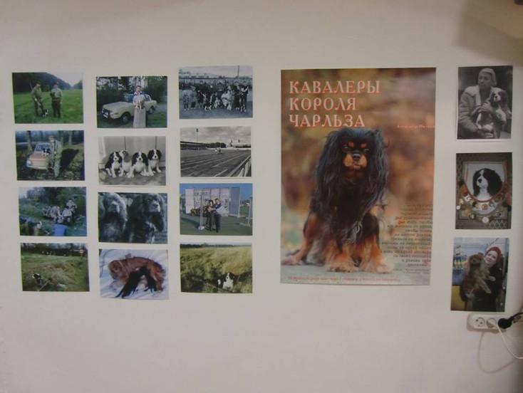 Часть Экспозиции о ККЧС в Музее Собаки
