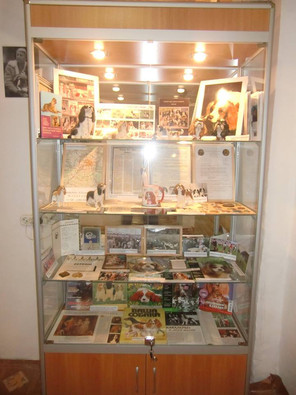 Витрина о Кавалерах в Музее Собаки