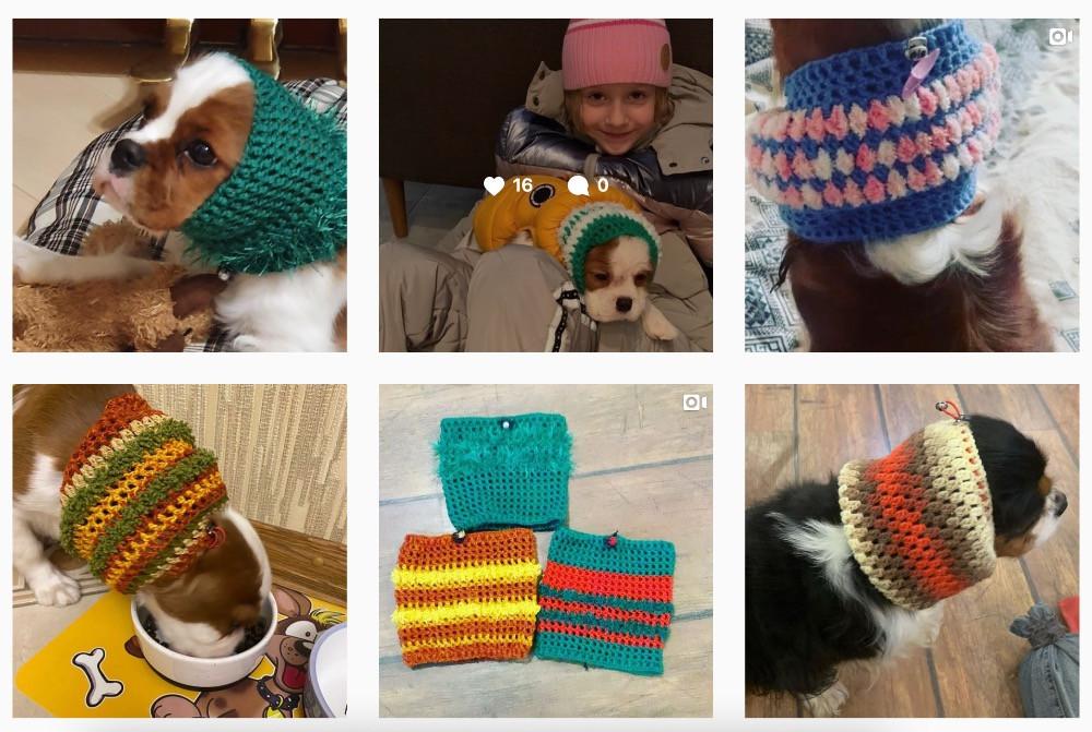 @spanielhatsnew - шапочки для спаниелей в Инстаграм