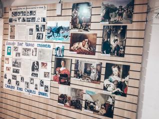 Часть экспозиции о Кавалерах